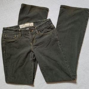 LOFT slim boot cords corduroy pants green gray 2